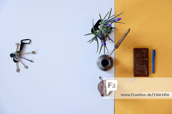 Overhead view of a bunch of keys flower pot and notebook