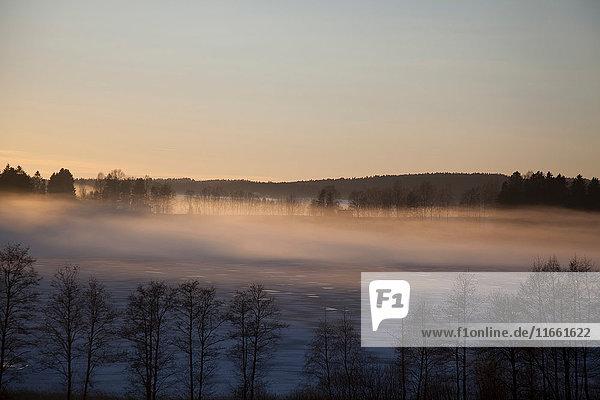 Erhöhte Landschaftsansicht von Wäldern und Talnebel bei Sonnenaufgang