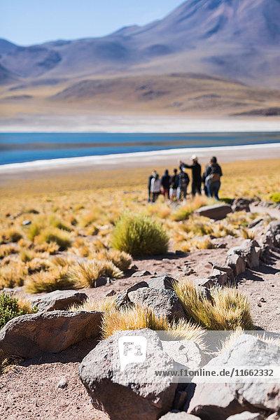 People visiting lake miscanti  San Pedro de Atacama  Chile