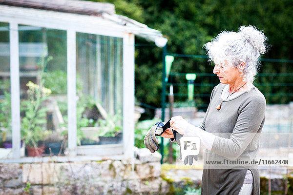 Reife Gärtnerin zieht Gartenhandschuhe an