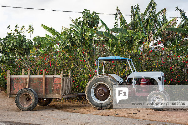 Tractor and trailer parked on roadside  Vinales  Cuba