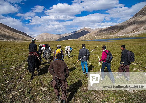 Treck in the pamir mountains with yaks  Big pamir  Wakhan  Afghanistan.