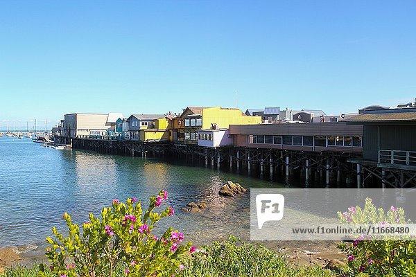 Fisherman's Wharf  Monterey  California  United States.