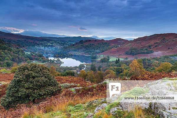 A view over Rydal Water from White Moss Common  Lake District National Park  Cumbria  England  United Kingdom  Europe.