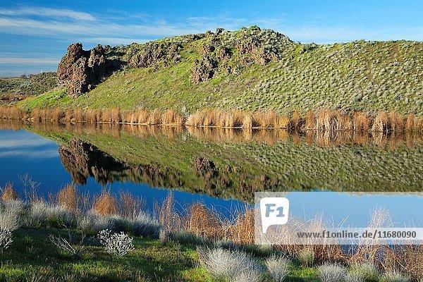 H Lake  Quincy Lakes Unit - Desert Basin Wildlife Area  Washington.