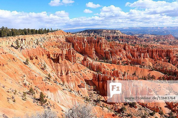 View north from the canyon rim at Sunset Point in spring in Bryce Canyon National Park Utah