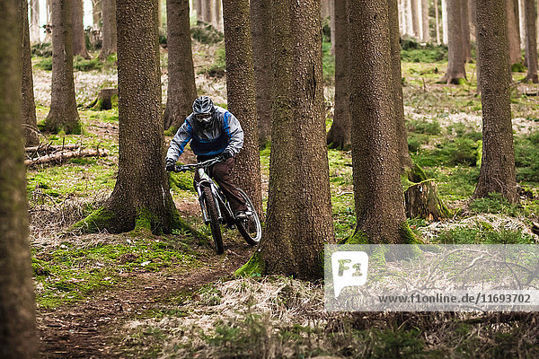 Junger Mann auf Mountainbike durch den Wald