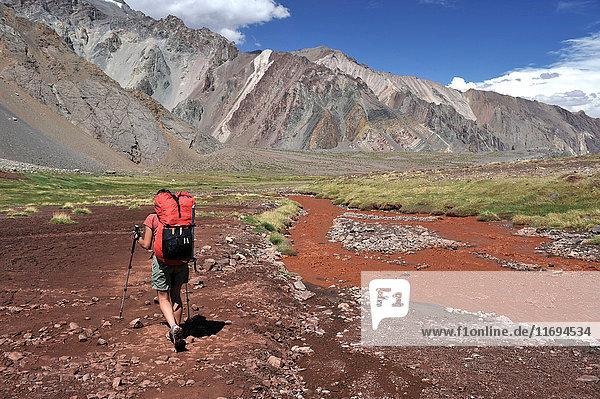 Frau steigt von der Plaza de Mulas am Aconcagua in den Anden ins Horcones-Tal hinab  Provinz Mendoza  Argentinien