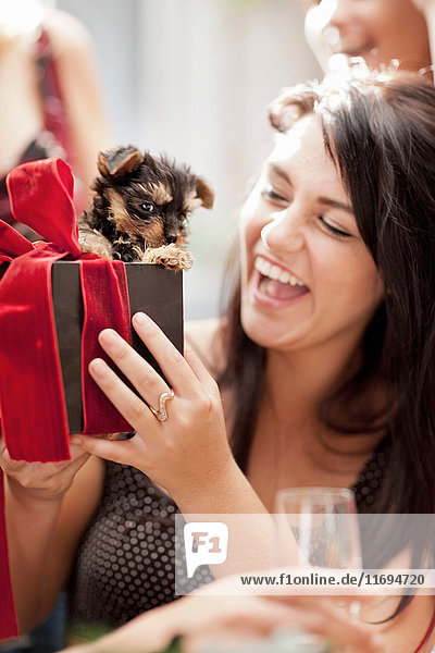 Woman receiving puppy as gift