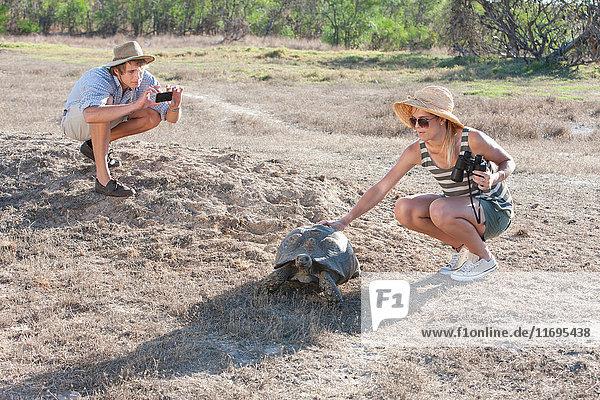 Paar mit Schildkröte  Stellenbosch  Südafrika