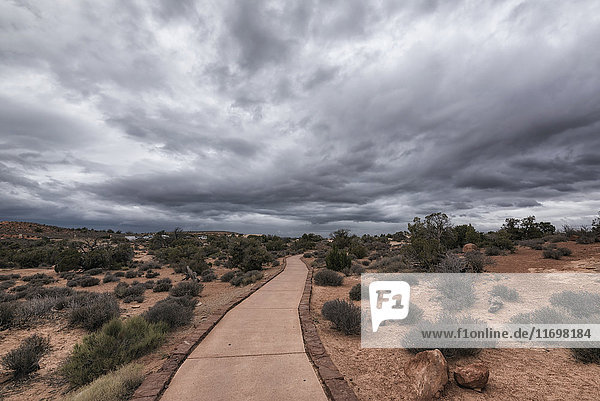 Path under clouds in Arches National Park  Moab  Utah  United States