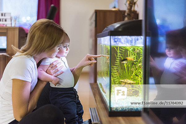 Mutter und Sohn beim Blick ins Aquarium