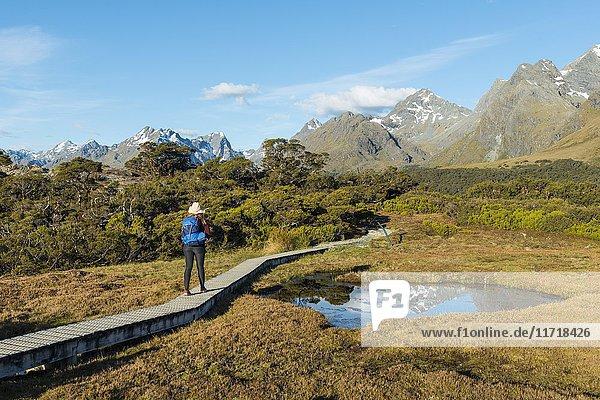 Wanderin auf einem Steg  Hochmoor  Bergseen und Ailsa Mountains  Key Summit Track  Fiordland Nationalpark  Southland  Neuseeland  Ozeanien