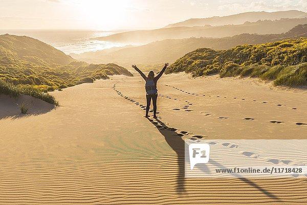 Frau streckt Arme in die Luft  Sanddünen mit gelben Lupinen (Lupinus luteus)  Sandfly Bay  Dunedin  Otago  Otago Peninsula  Südinsel  Neuseeland  Ozeanien