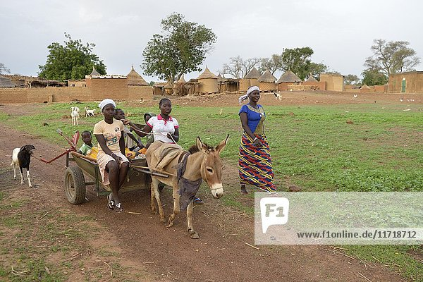 Familie mit Eselskarren  Tinkoaguelga  Gomponsom  Provinz Passoré  Region Nord  Burkina Faso  Afrika