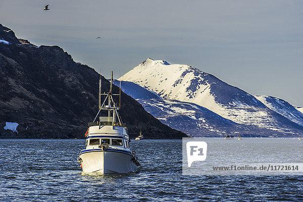 'Drift boat in Kulukak Bay in the Bristol Bay region of Alaska in late spring  Southwest Alaska  USA'