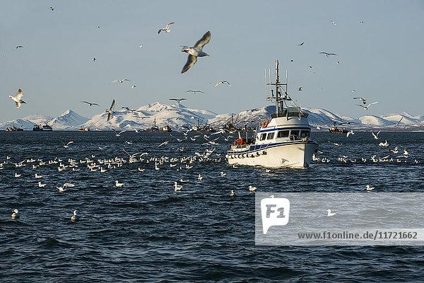 Drift boat in Kulukak Bay in the Bristol Bay region of Alaska in late spring  Southwest Alaska  USA