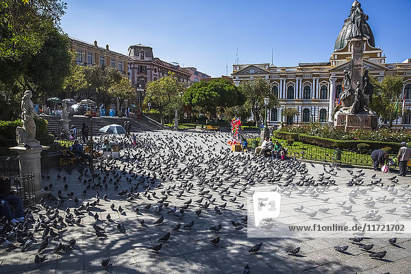 'The Presidential Plaza in downtown La Paz  Bolivia is filled with pigeons; La Paz  Bolivia'