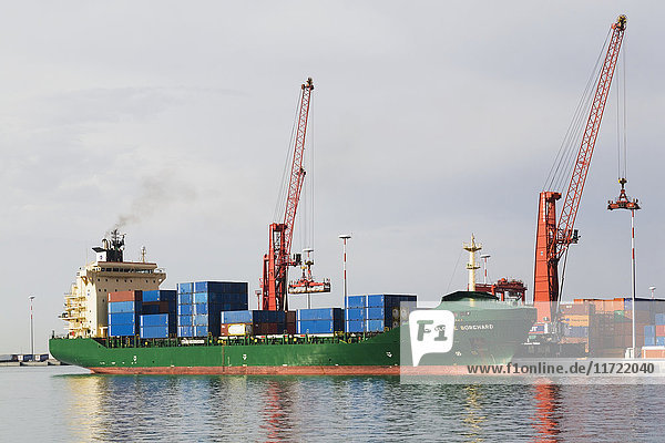 'Docked Charlotte Borchard cargo ship with stacked shipping containers and gantry cranes on dock in the port of Salerno; Salerno  Campania region  Italy'