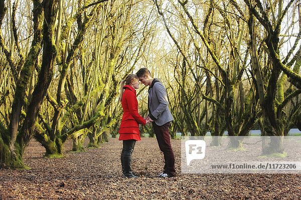 'A young couple stands in a park face to face with foreheads touching; Oregon  United States of America'
