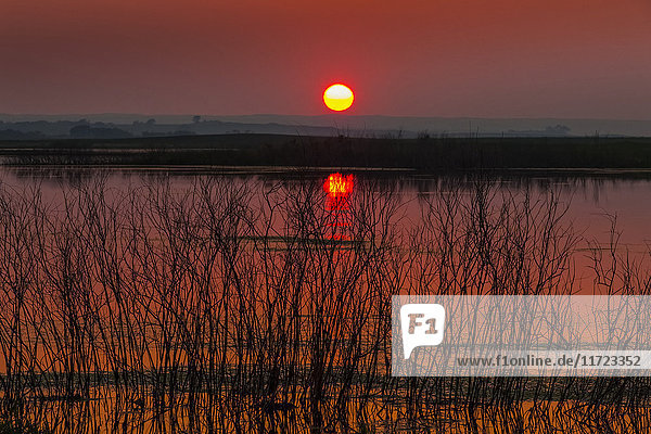 'A glowing sun sinking over the horizon with a pink sky reflecting in the tranquil water of Echo Lake; Saskatchewan  Canada'