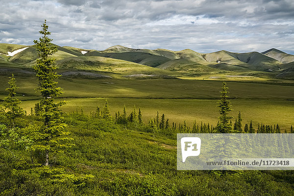 'The Richardson Mountains at the Arctic Circle; Yukon  Canada'
