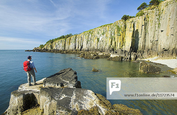 'Hiker along basalt rock cliffs  Bay of Fundy; Brier Island  Nova Scotia  Canada'