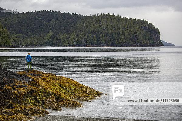 'Man standing on a rock overlooking the ocean  Gwaii Haanas National Park; British Columbia  Canada'