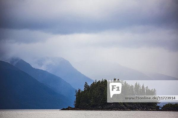 'A moody scene in Gwaii Haanas National Park; British Columbia; Canada'