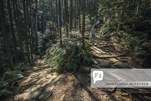 Hiker walking in forest