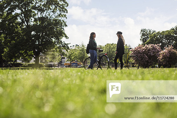 Two young women standing with bicycles in park Two young women standing with bicycles in park
