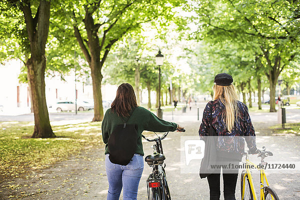 Two young women walking in park and pushing bikes Two young women walking in park and pushing bikes