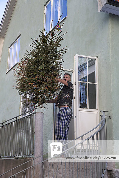 Man throwing Christmas tree after Christmas