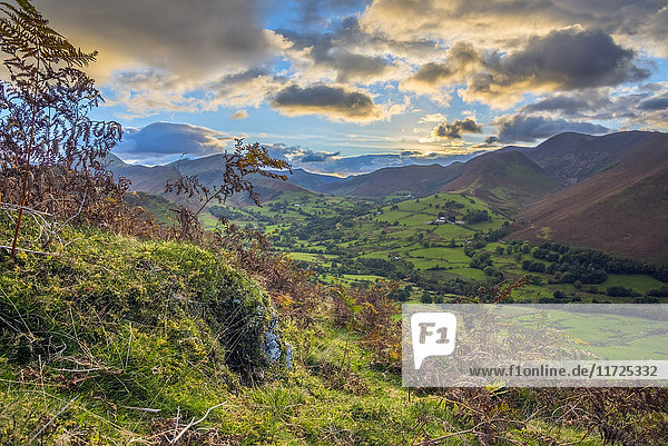 UK  England  Cumbria  Lake District  Newlands Valley