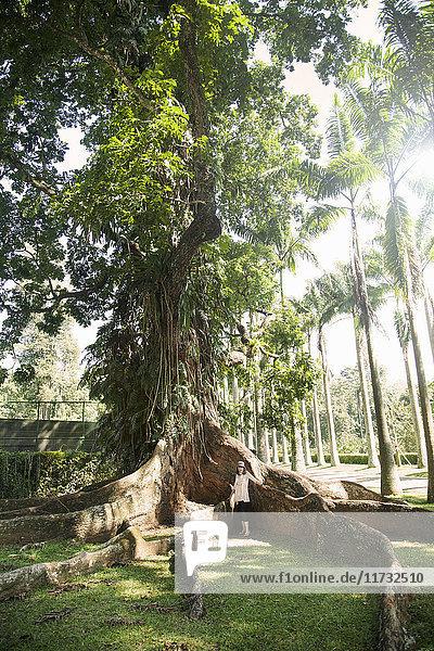 Frau an Baumwurzeln stehend  Royal Botanic Gardens Peradeniya  Kandy  Sri Lanka