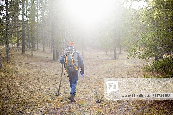 Hiker  Yellowstone National Park  Wyoming  USA