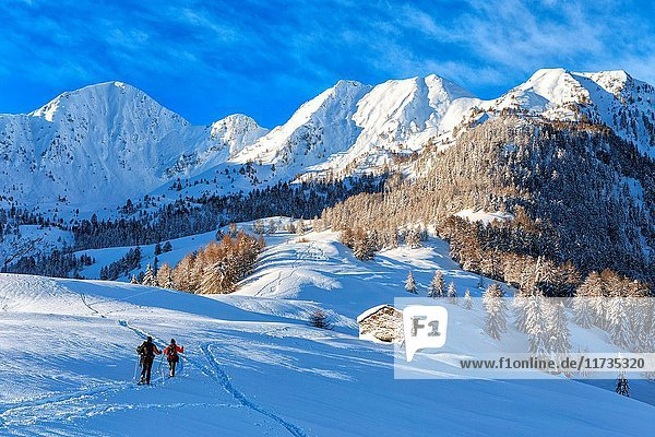 Hikers enjoying a trek through the snow in Motta Olano  Valgerola  Italy.