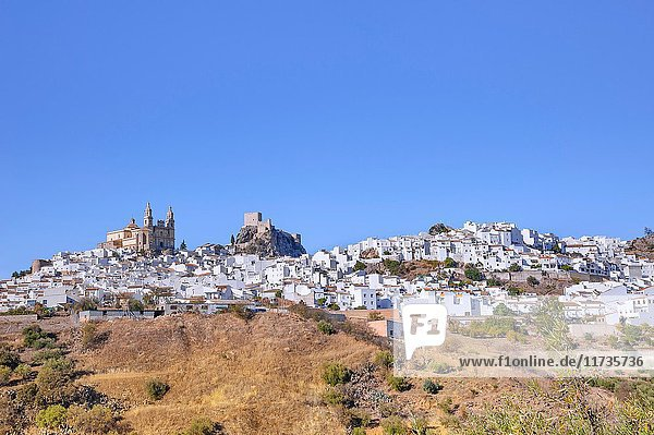Olvera  White Towns of Andalusia  province of Cádiz  Spain.