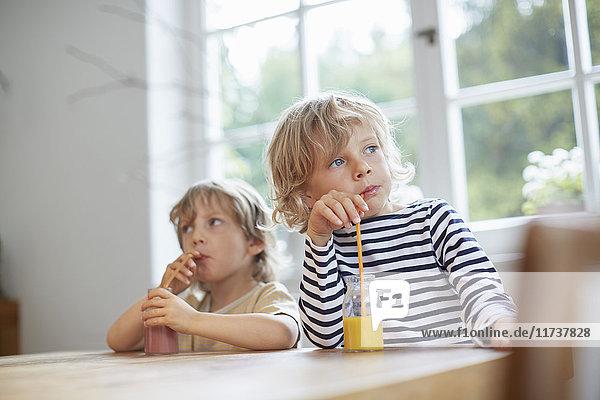 Zwei junge Brüder sitzen am Tisch und trinken Getränke mit Strohhalmen