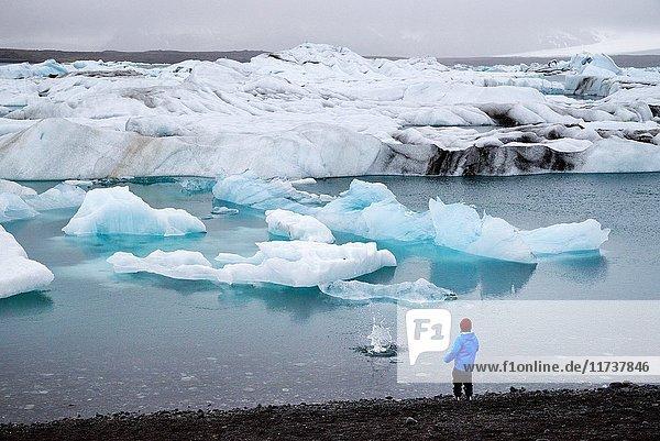 Iceland  Austurland region  Vatnajokull National Park  the glacial lake of Jokulsarlon is a very deep lagoon filled with floating ice between the glacier Breidamerkuryokull tongue (Vatnajokull glacier tongue) and its moraine