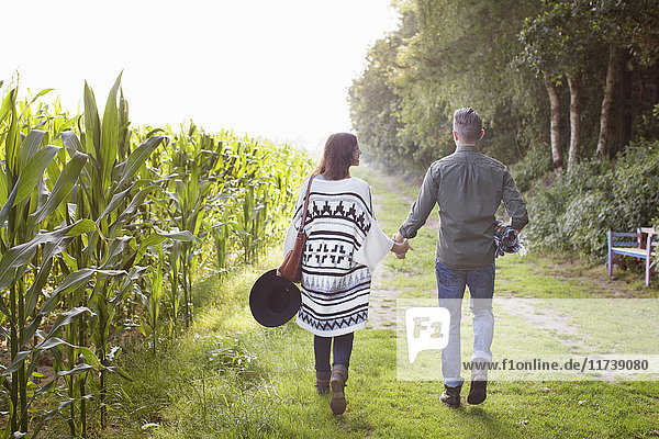 Rear view of couple strolling and holding hands in field
