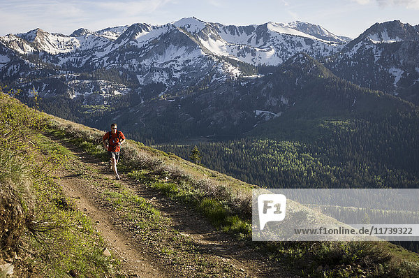 Male trail runner on the Wasatch Crest Trail  Banff National Park  Alberta  Canada