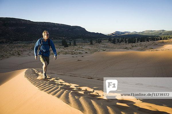 Männlicher Wanderer auf Star Dune  Coral Pink Sand Dunes State Park  Utah  USA
