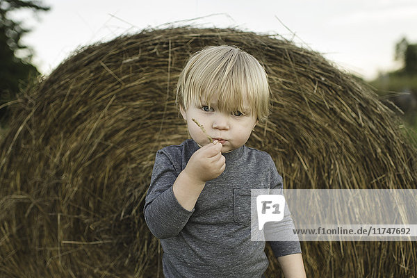 Portrait of young boy  outdoors