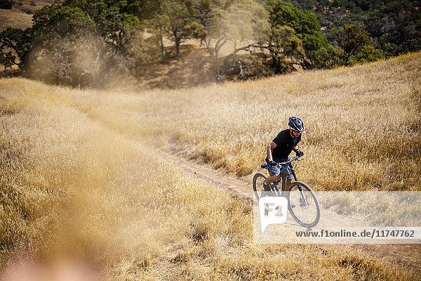 Erhöhte Ansicht eines jungen Mannes beim Mountainbiking auf einem Feldweg  Mount Diablo  Bay Area  Kalifornien  USA