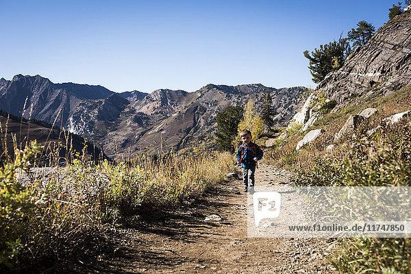 Kleinkinderwandern  Catherine's Pass Trail  Albion Basin  Alta  Utah  USA