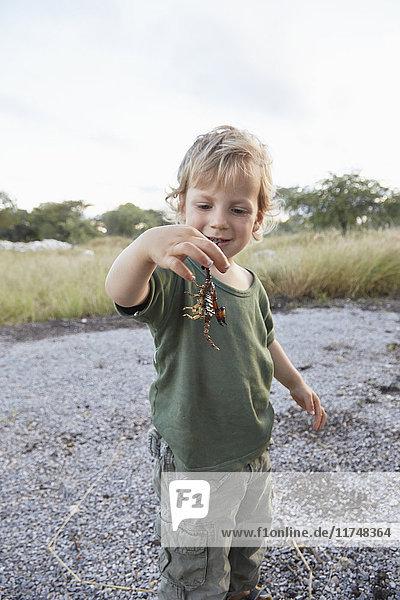 Portrait of young boy holding scorpion  Otavi  Etosha  Namibia