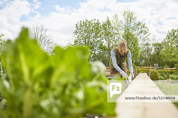 Reife Frau  im Freien  Gartenarbeit