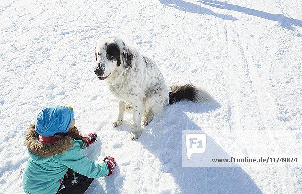 Mädchen verbindet sich mit ihrem Haushund
