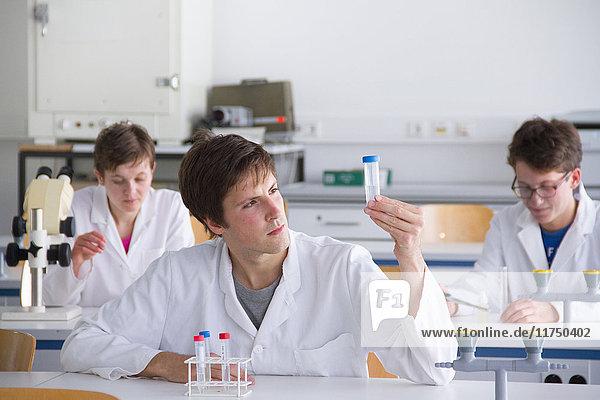 Im Labor arbeitende Wissenschaftler